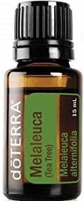eterično olje čajevec tea tree melaleuca