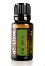 eterično olje koriandrovih semen koriandrova semena coriander