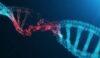 imunski sistem zdrava funkcija zdrava odzivnost epigenetika zdravje